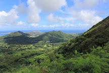 Nu'uanu Pali, Oahu, United States