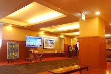 Hotel Tateyama / Tateyama transmural light Terminal Co., Ltd., Tateyama-machi, Japan