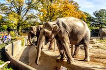 Tierpark Hagenbeck, Hamburg, Germany