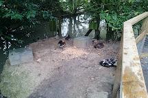 Axe Valley Wildlife Park, Axminster, United Kingdom