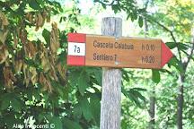Cascata di Calabuia, San Godenzo, Italy