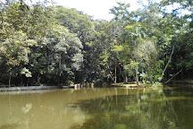 Parque Estadual do Jaragua, Sao Paulo, Brazil