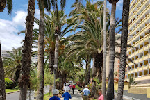 Segway Experience, Puerto de la Cruz, Spain