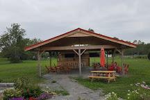Sugarbush Vineyards, Hillier, Canada
