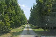 Acetaia San Matteo, Modena, Italy