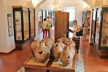 Museo Archeologico di Pithecusae, Lacco Ameno, Italy