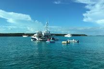 Pig Beach - Big Major Cay, Staniel Cay, Bahamas