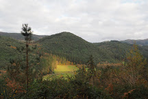 Bosque de Oma, Kortezubi, Spain
