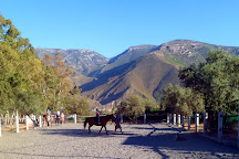 Pegasus Riding Centre, Orgiva, Spain