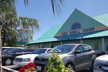Shell We Golf, Rehoboth Beach, United States