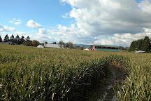 Hopcott Farms, Pitt Meadows, Canada