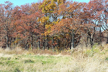 Fort Sheridan Forest Preserve, Lake Forest, United States