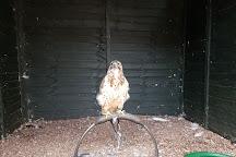 Gentleshaw Wildlife Centre, Stafford, United Kingdom