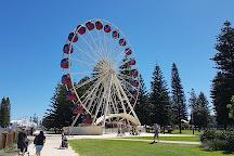 Tourist Wheel Fremantle, Fremantle, Australia
