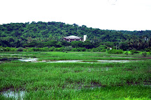 Dr. Salim Ali Bird Sanctuary, Panjim, India