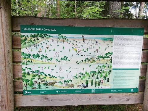 Selli-Sillaotsa study trail