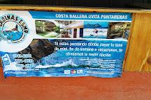 Cabinas Esmo, Ballena, Costa Rica