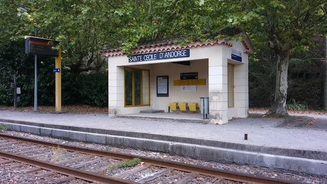 Train de l'Andorge en Cévennes - TAC