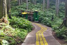 Skytrek Adventure Park, Revelstoke, Canada