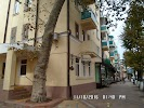 Кипарис, Советская улица, дом 39 на фото Краснодара