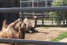 Grodno Zoo, Grodno, Belarus