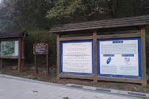Gwanggyosan Mountain, Suwon, South Korea