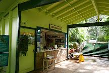 Foster Botanical Gardens, Honolulu, United States