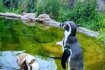 Krefeld Zoo, Krefeld, Germany