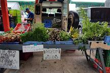 Feria Del Agricultor, Grecia, Costa Rica