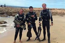 Shark Diving Adventures, Durban, South Africa