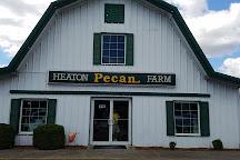Heaton Pecan Farm, Clanton, United States
