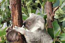 Wildlife Habitat Port Douglas, Port Douglas, Australia