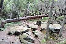 Pack Monadnock Mountain, Fitzwilliam, United States