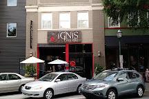 iGNiS Glass Studio, Chattanooga, United States