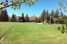 University of Wyoming, Laramie, United States