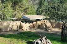 San Diego Zoo, San Diego, United States
