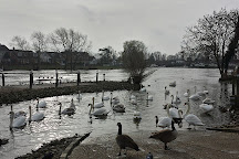 Truss's Island, Egham, United Kingdom