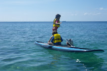 Vieques Paddleboarding, Isla de Vieques, Puerto Rico