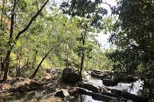 Attie Creek Falls, Cardwell, Australia