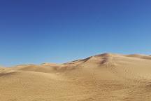 North Algodones Dunes Wilderness Area, California, United States