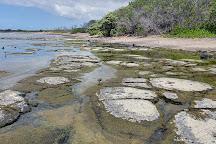 Kaloko-Honokohau National Historical Park, Kailua-Kona, United States