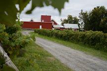 Vignoble Gagliano, Dunham, Canada