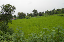 Hathni Mata, Vadodara, India