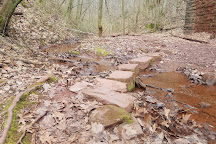 Ruffner Mountain Nature Preserve, Birmingham, United States