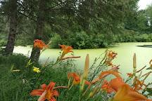 Monk Botanical Gardens, Wausau, United States