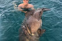 Live Action Sportfishing, Key West, United States