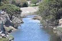 Upper Newport Bay Nature Preserve, Newport Beach, United States