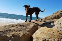 Poplar Beach, Half Moon Bay, United States