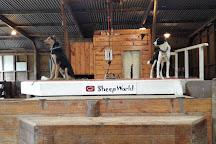 Sheepworld, Warkworth, New Zealand