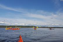 Kayak Nisqually, Olympia, United States